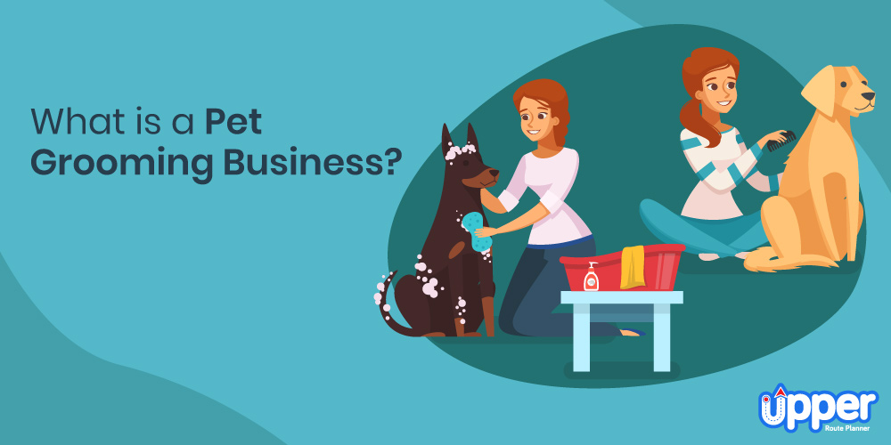 What is a Pet Grooming Business?